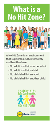 What is a No Hit Zone (#3005)